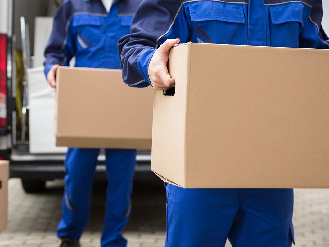 About Montana Movers
